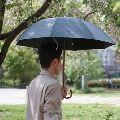 傘にこだわれば雨の日でも気分晴れやか。大人におすすめの17ブランド