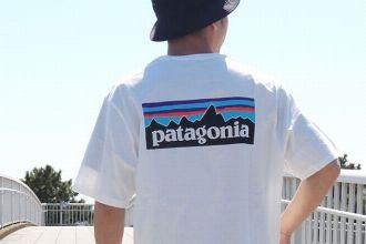 パタゴニアのTシャツはこれが買い。おしゃれ心にも環境にも配慮できる12枚