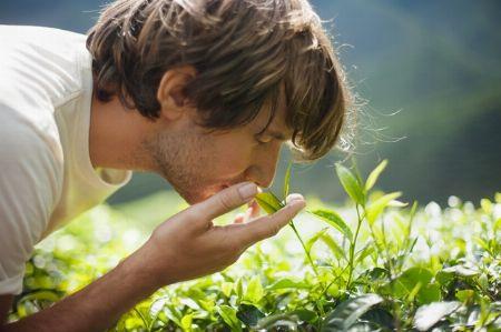 香り選びはクリーンな爽やかさを重視