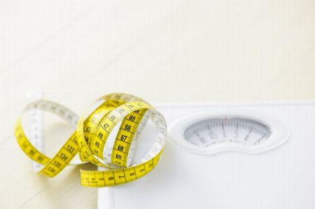 脂肪の増加(太った)