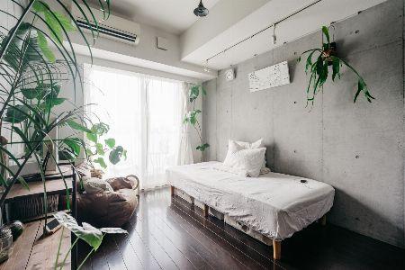 板付けのコウモリランを飾って、空いたスペースを有効活用