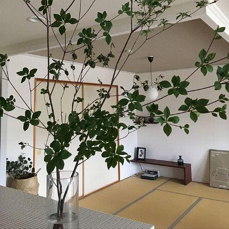 和室には畳に似合うシンプルデザインを