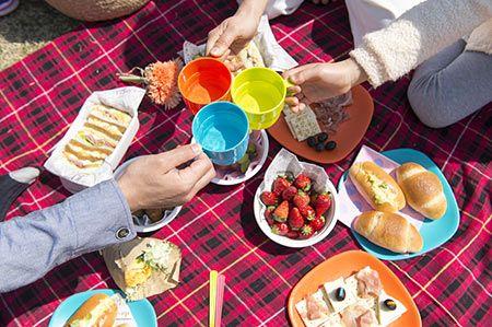 天気のいい休日にピクニックなんて最高!