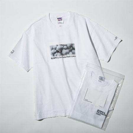 『ベドウィン&ザ・ハートブレイカーズ』×『ボタナイズ』のTシャツ