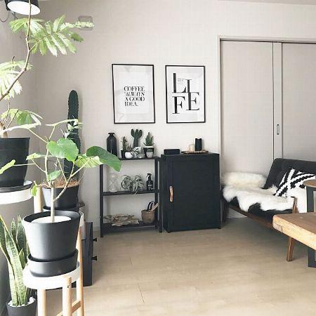 観葉植物×フェイクグリーンのMIX