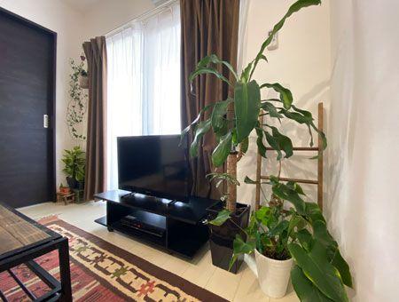 【CASE.03】ウッディな家具、配色、緑。三位一体のほっこり部屋 2枚目の画像