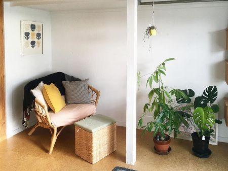 空間の仕切りに合わせて植物を配置