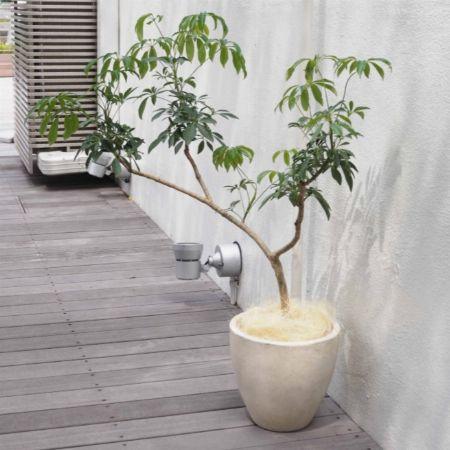 観葉植物に合わせてインテリア性重視で選ぶなら「陶器の化粧鉢」
