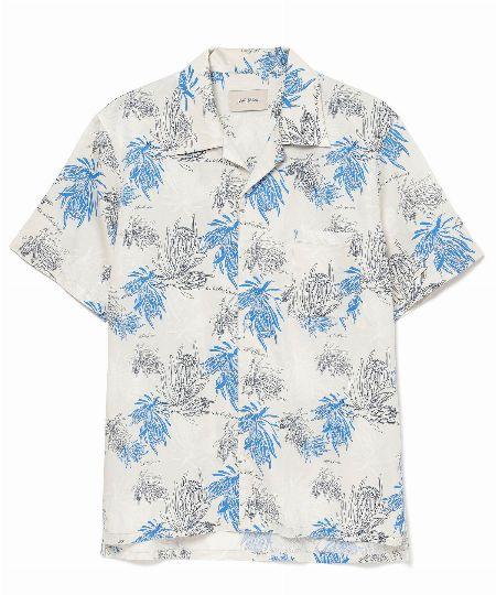 プロテアサテンシャツ