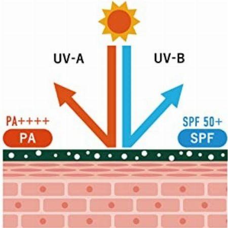 日焼け止めの効果を示す、SPFやPAって何?