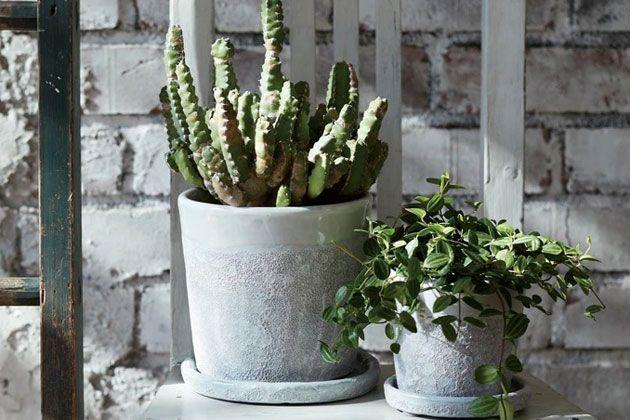 プランターにだってこだわりたい。観葉植物や家庭菜園を彩るおしゃれな10アイテム